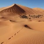 Unos días de viaje por Marruecos