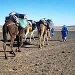 Ritos funerarios de los bereberes