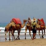 Cómo se celebra la Navidad en Marruecos