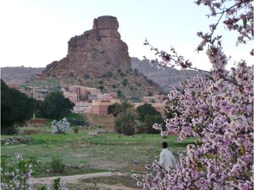 Festival del Florecimiento del Almendro, en febrero