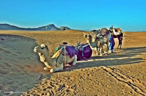 Segundo día, rumbo al desierto de Zagora