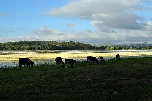 Lago Dayet-Aoua