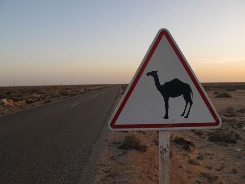 Desierto en Guelmim