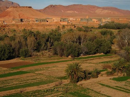 Erfoud y su desierto
