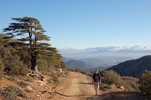 Parque Nacional Jebel Tazzeka