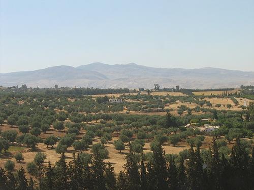 Alrededores de Meknes