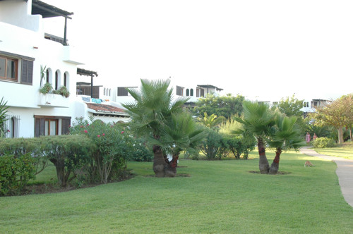 Playa de golf Cabo Negro