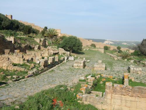 La ciudadela de los Jardines de Chellah