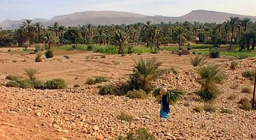el oasis de Akka