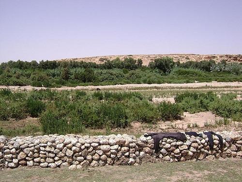 Oasis en Abaynou