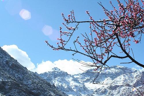 Hacer senderismo y esquiar en Toukbal Massif