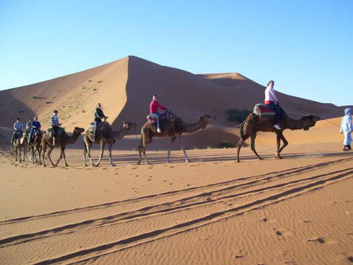 Excursiones en camello